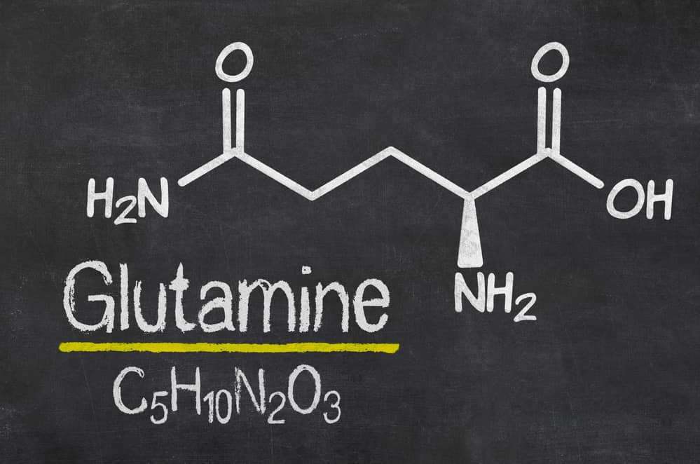 mejor glutamina para el desarrollo físico