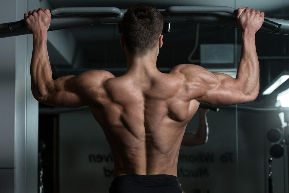 Qué músculos trabajan las dominadas en los hombres
